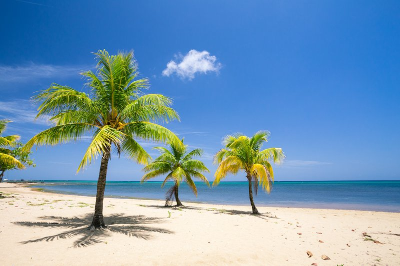 Enjoy the sun and the sand on your vacation-