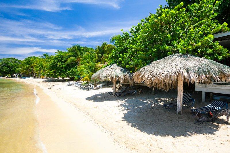 Dirigez-vous vers la plage pour le matin, l'après-midi ou toute la journée!