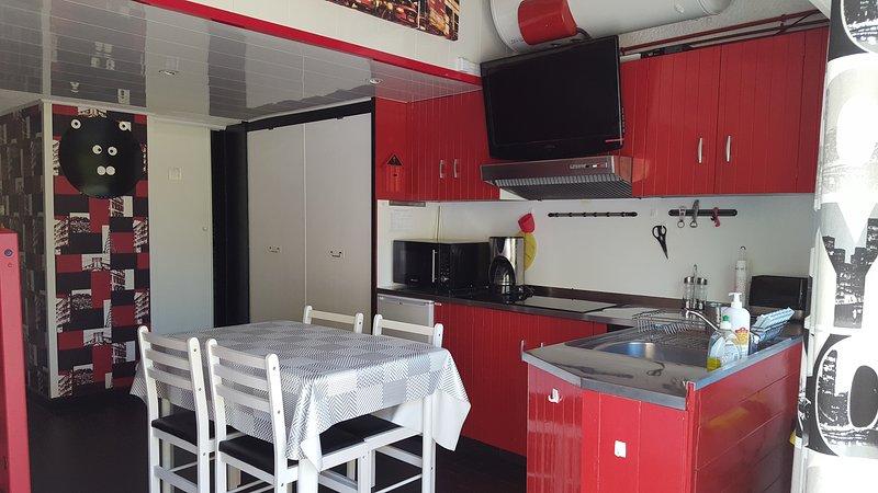 STUDIO DUPLEX VUE SUR LA MONTAGNE, holiday rental in Puy-de-Dome