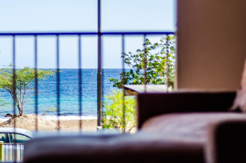View from your bed every sunny morning