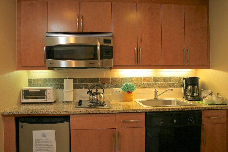 Kitchenette includes mini fridge, dish washer two burner stove top and convection microwave