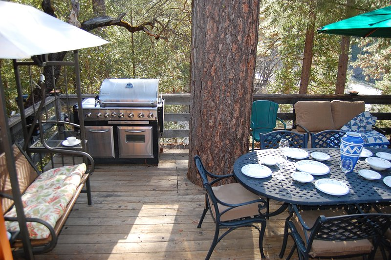 Covered swing, large gas grill, picnic table for 6, and the south fork of the Merced River too!