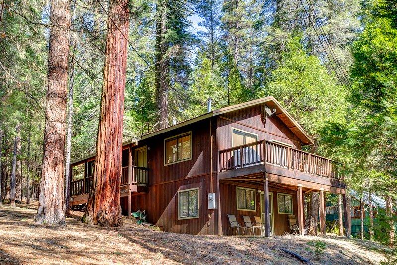 Cecil's Cabin