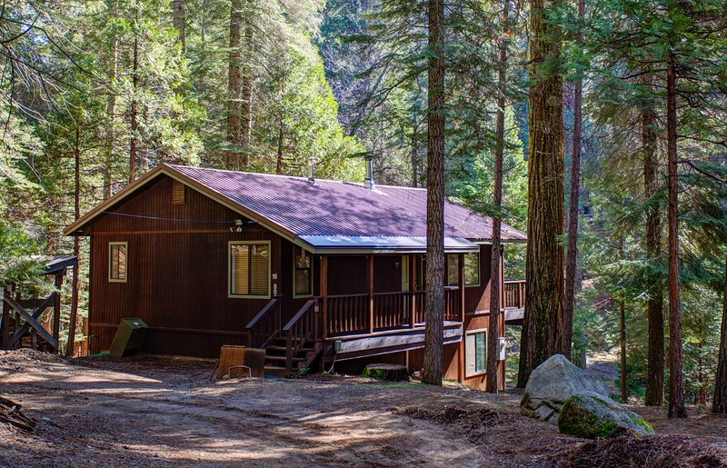 Surrounded by lots of trees! Peaceful location, no traffic, no crowds.  Kids free to explore the woods with no interruptions or worries.