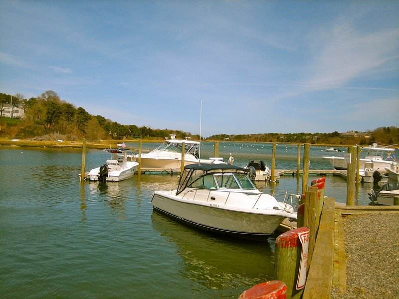 Ryder's Cove Marina, bem abaixo, um bom lugar para deixar cair um caiaque ou uma linha na água.