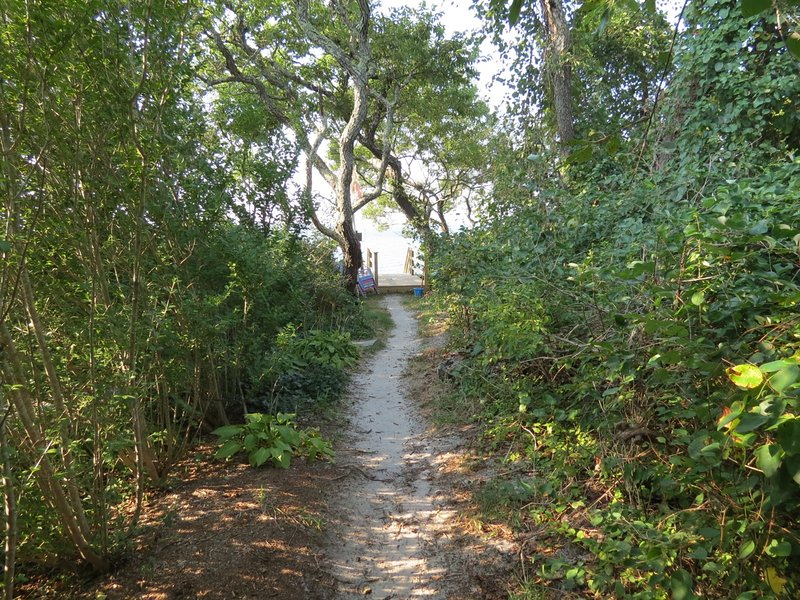 This path to the beach is about 100 feet from the door to the house.