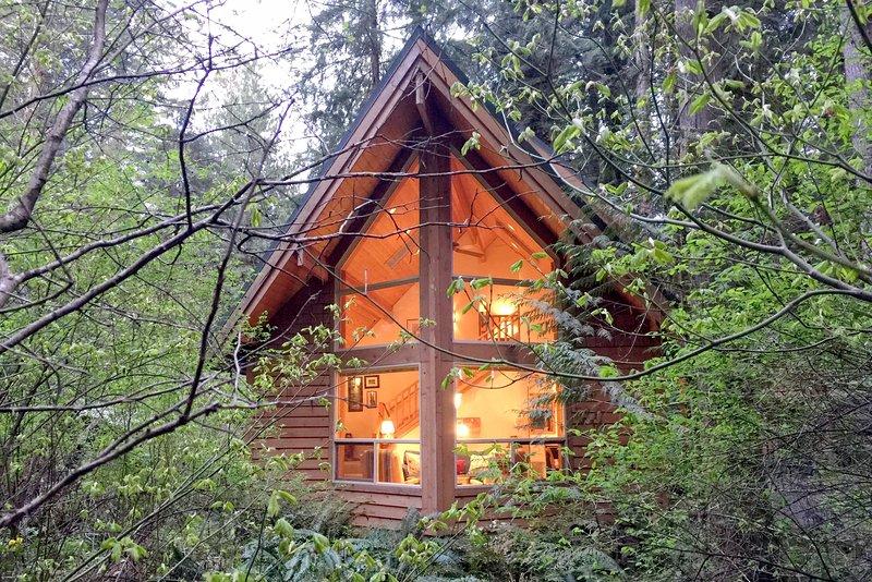 Snowline Family Cabin #4 - HOT TUB, FIREPLACE, BBQ, DISHWASHER, PETS OK, SLPS-5!, vacation rental in Glacier