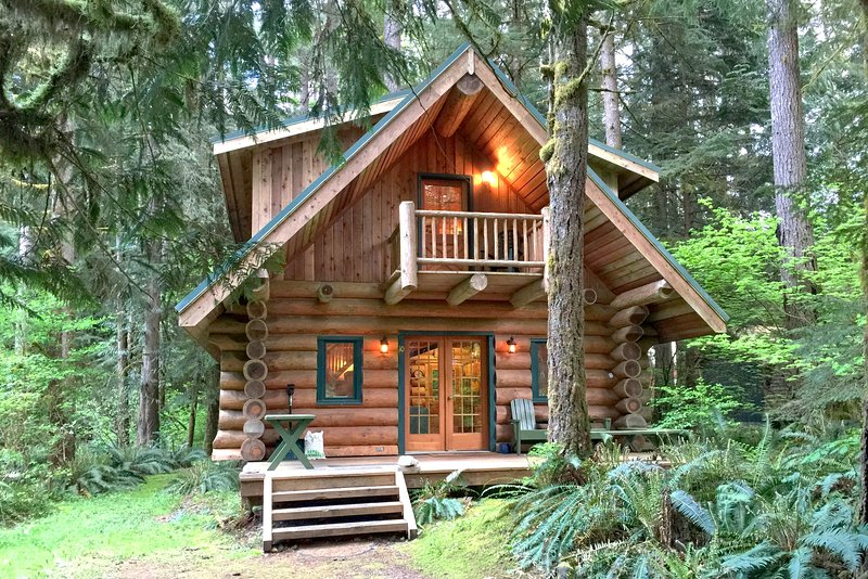 Building,Cabin,Shelter,Bench,Fir