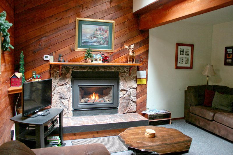 monte Baker Lodging - Cabin # 26 - ¡TINA CALIENTE, SALA DE JUEGOS, BBQ, SLEEPS-8!