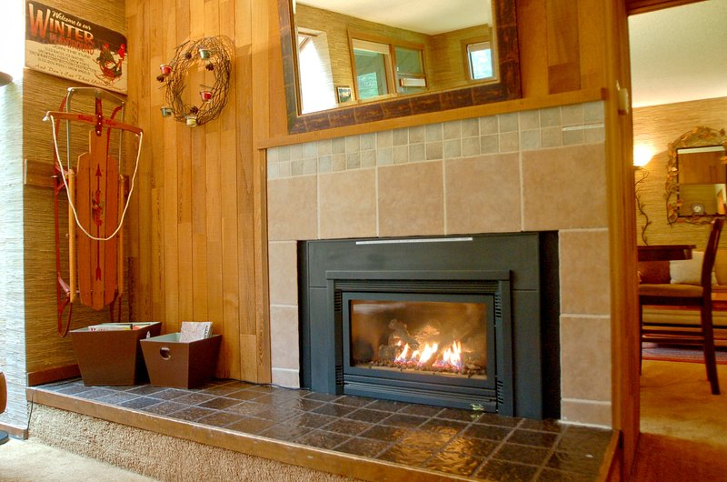 Gas fireplace in front living room