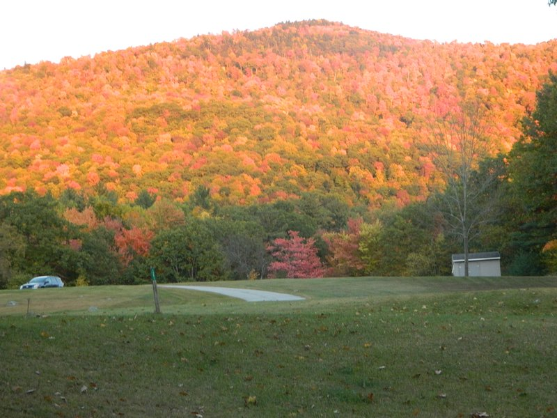 Autumn crayon box view of mountain across street.