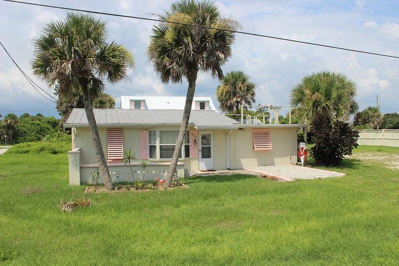 Yard,Building,Cottage,Palm Tree,Tree