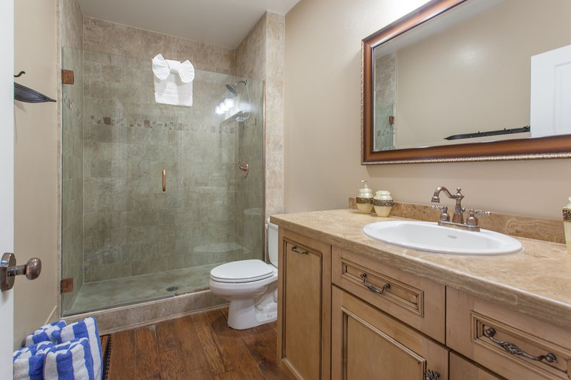 Guest Bathroom, Shower, Granite counters, updated tile