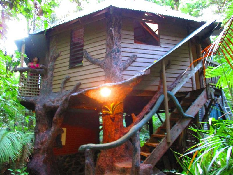 Front view of the jungle treehouse