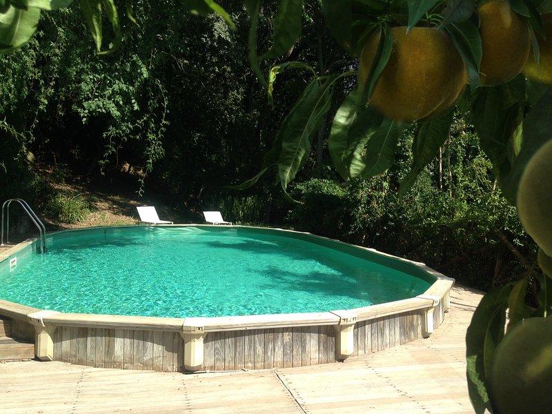 Kid friendly farmhouse w pool, location de vacances à Orvieto