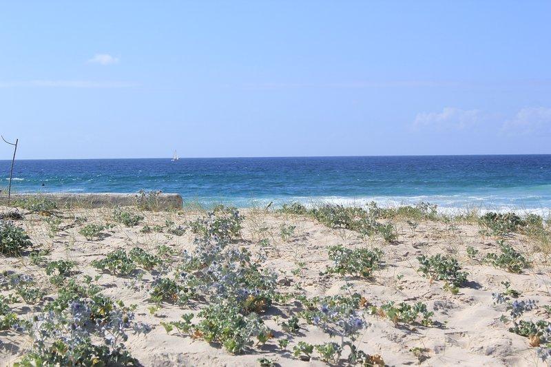 Baldaio beach dunes reasons outside the house