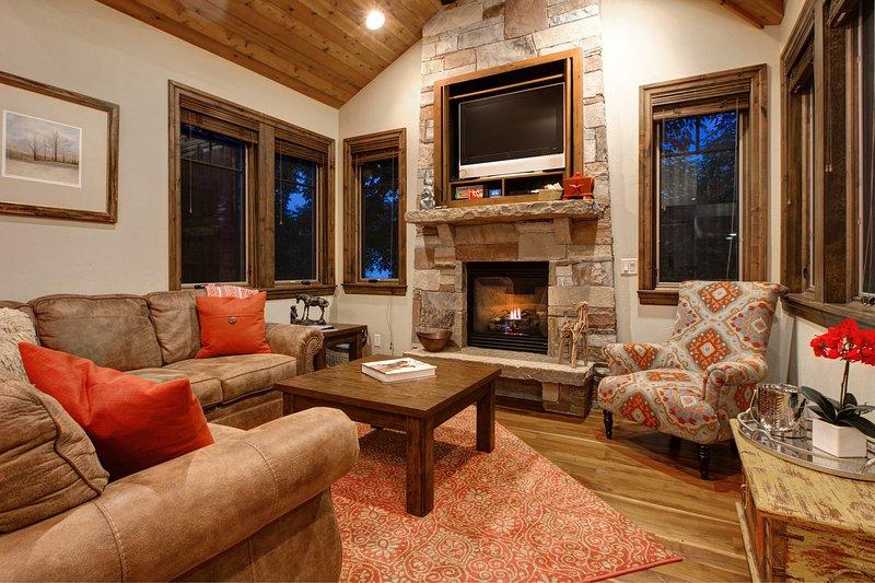 cheminée en pierre dans le salon