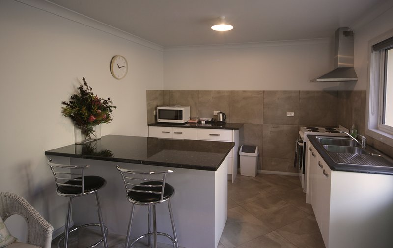 Kitchen area of Mt Roland Apartment