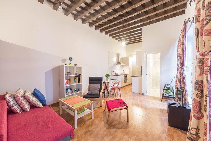 Estudio de 50 m2 Reformado en el Centro de Cádiz. Al lado de la Plaza España, holiday rental in Cadiz