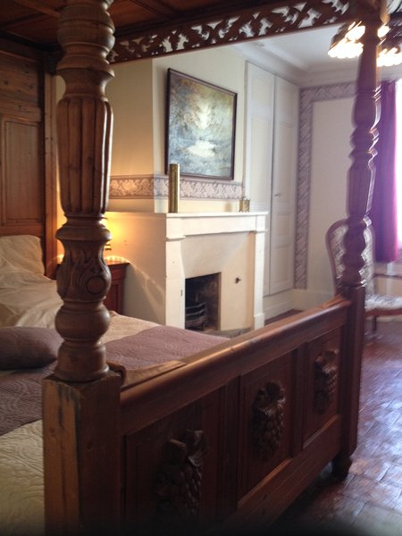 Le Lys Bleu, holiday rental in Chaveignes