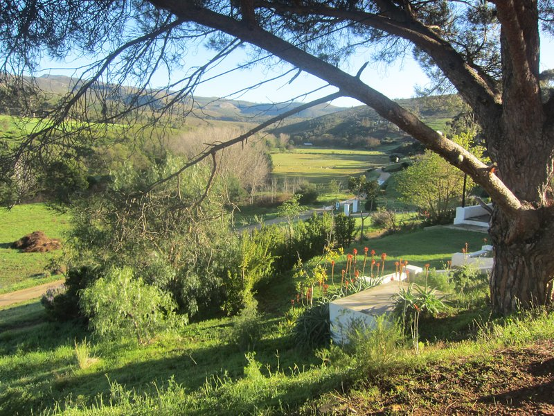 Self-catering accommadation on Life-style farm, holiday rental in Caledon