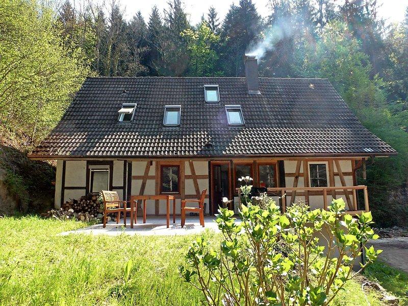 Leubach, holiday rental in Aichhalden