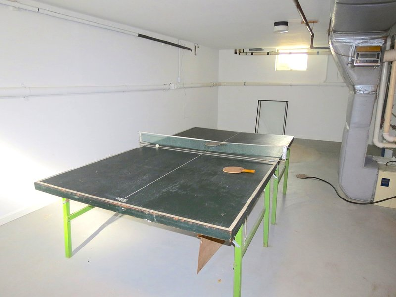 Ping pong table in the basement