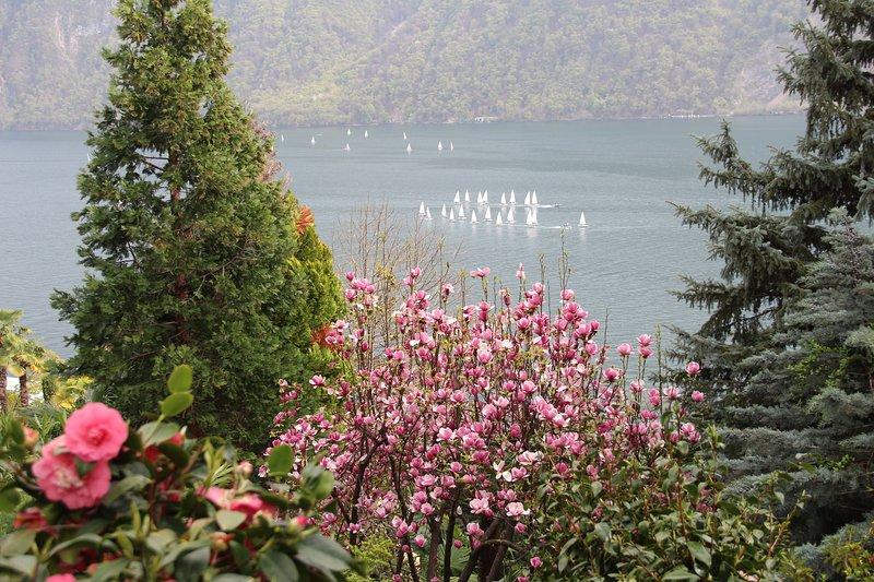 zeilschool op het meer van Lugano