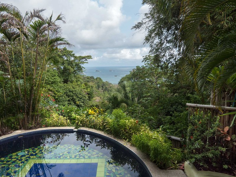 Take in the views of the Manuel Antonio area right from the pool.