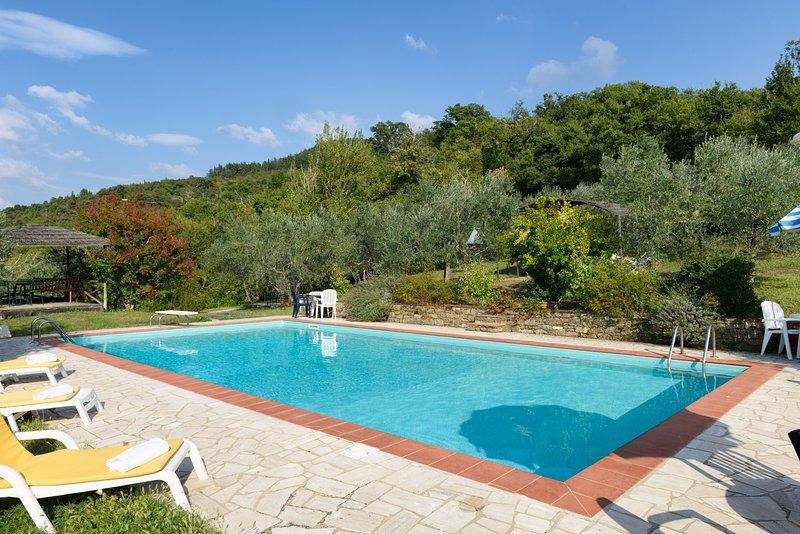 Gran piscina y alrededores de Borgo, y Il Sole Cottage