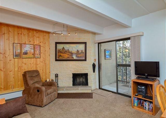 Tenmile Island Condo Living Area Frisco Lodging Vacation Rentals