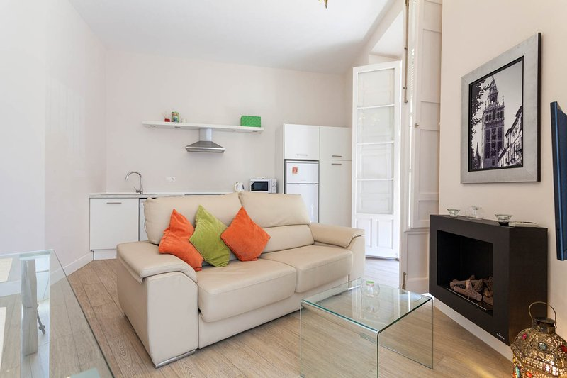 Charming and Central Apartment, vacation rental in Seville
