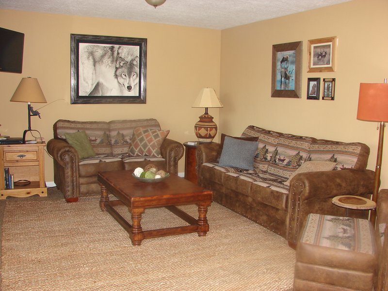Plush Family Rm W/Bar, Flat Screen, Directv 200+ & NFL Ticket, Library - Books, Movies, Video Games