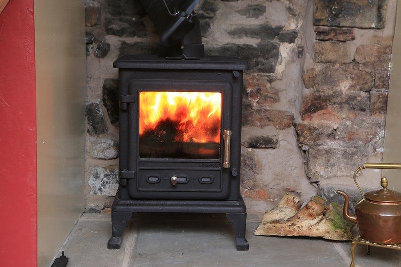 The Log Burner on Full Coal, Real hot!