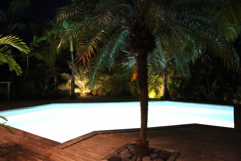The pool and night garden