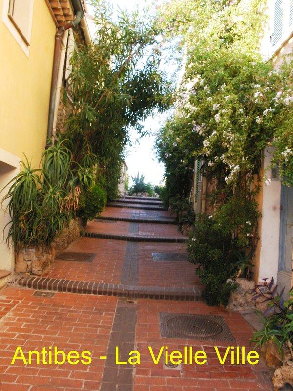 ANTIBES = L'une des nombreuses rues étroites pleines de fleurs dans la vieille ville