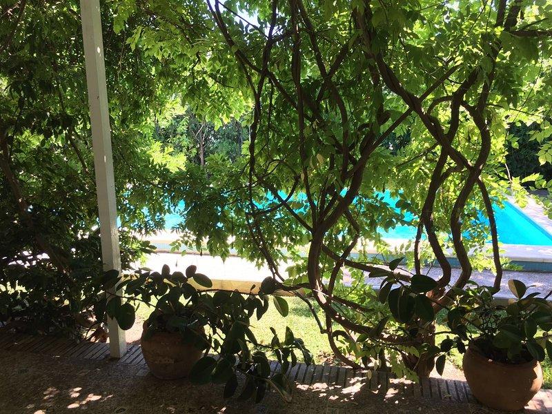 BEAUTIFUL RELAXING VILLA , PINEWOOD AREA 15 MINS FROM SEVILLA, holiday rental in Los Palacios y Villafranca