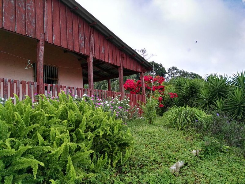 Vista de casa de campo comasagua