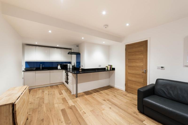 TURTLE LUXURY APARTMENT - JACUZZI /ROYAL MILE AREA, holiday rental in Edinburgh