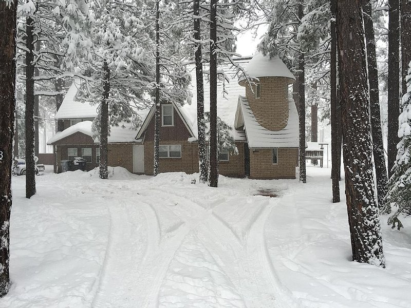 Spacious Family Cabin Winter View