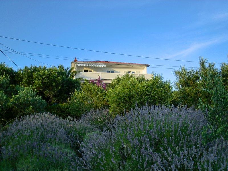 La nostra villa Lavanda, il nostro appartamento Maja si trova al piano alto