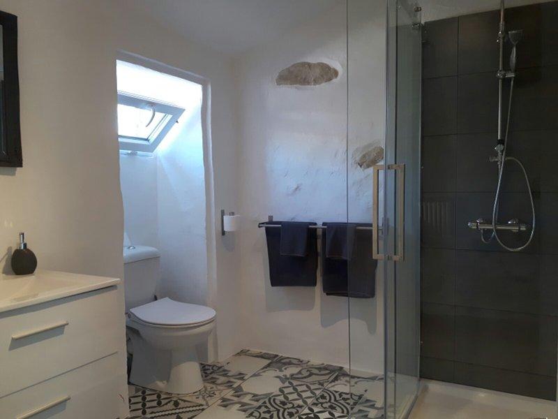 moderno cuarto de baño con ducha grande.