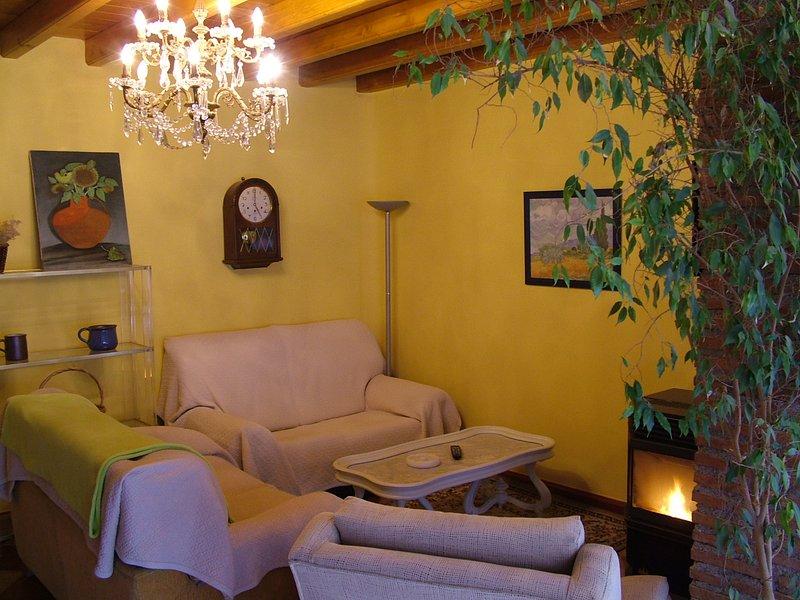 Cozy living room with wood pelett-