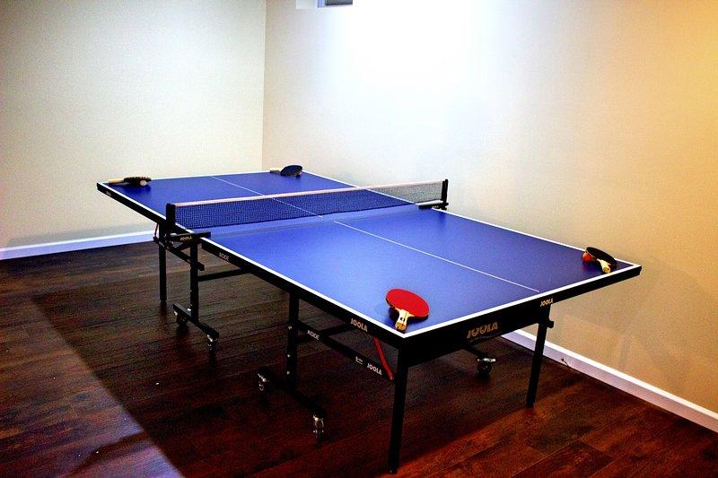 Primer punto de vista de la mesa de ping pong profesional