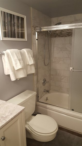 Second bathroom with newly updated fixtures.