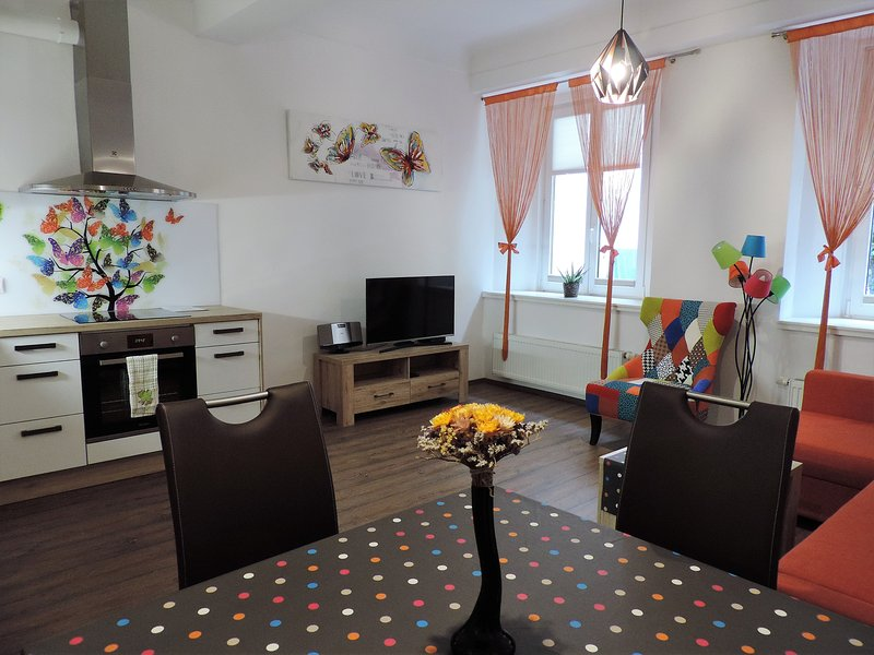 TARA old town apartment (air conditioning)-strict city center, vacation rental in Ljubljana