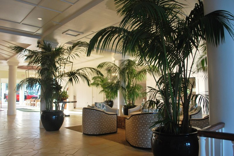 Tropical lobby area