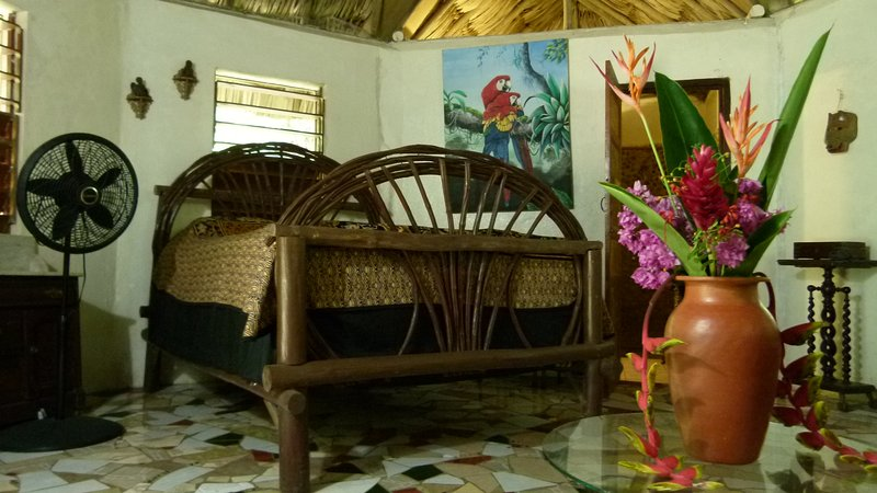 Macaw Bank Jungle Lodge - The Macaw Cabana, vacation rental in San Ignacio