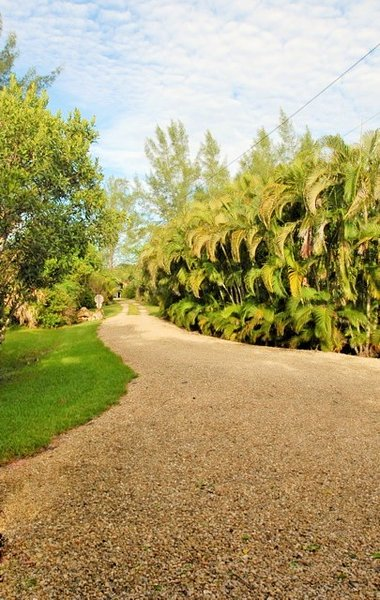 Secluded Tropical Paradise, 2 Bikes, Pet-friendly UPDATED