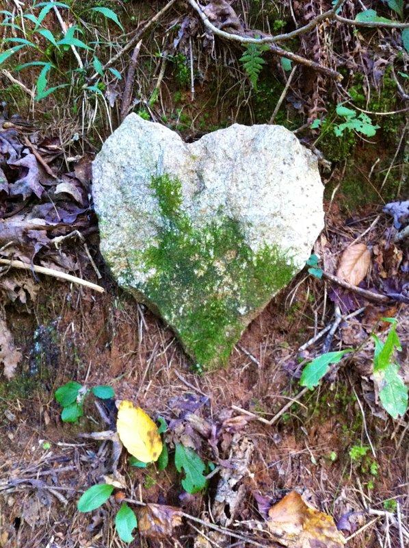 la roca del corazón